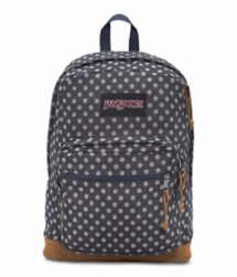 JanSport Right Pack Express Backpack