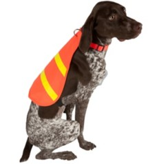 Scott Pet Hi-Vis Safety Dog Vest