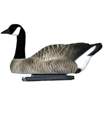 Canada Goose' price tracker