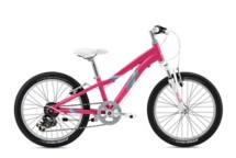 Fuji Dynamite 6SPD Kids' Mountain Bike