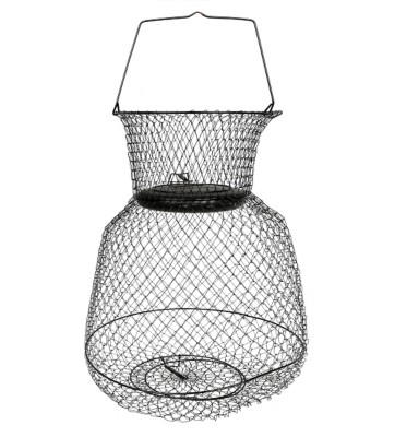 Scheels outfitters floating fish basket scheels for Floating fish basket