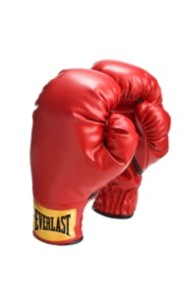 Everlast Youth Slip-On Boxing Gloves