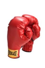 Everlast Youth Slip-On Boxing Gloves