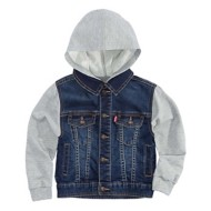 Toddler Boys' Levi's Hooded Trucker Jacket