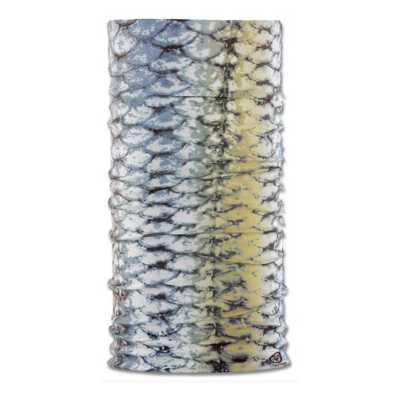 Fish Scales