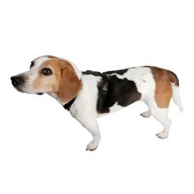 Scott Pet Adjustable Nylon Harness