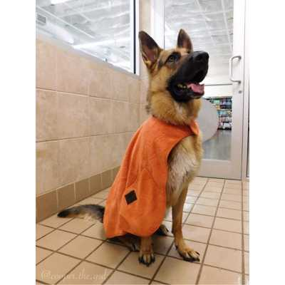 Tall Tails Cape Dog Towel