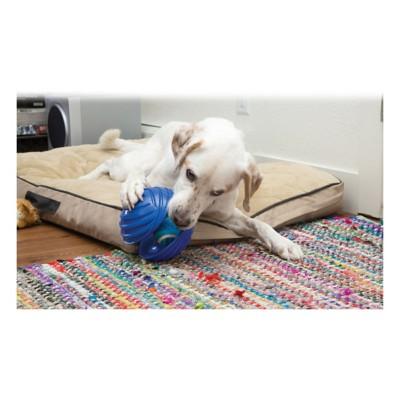 KONG Rambler Ball Dog Toy