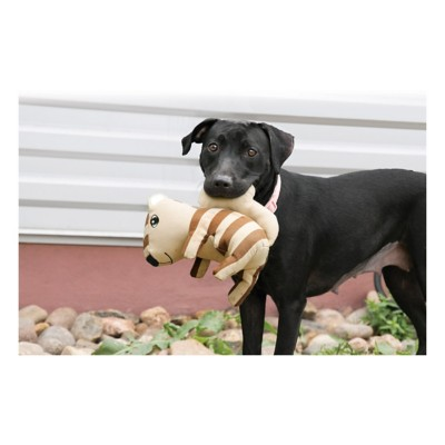 KONG Ballistic Woodland Squirrel Dog Toy