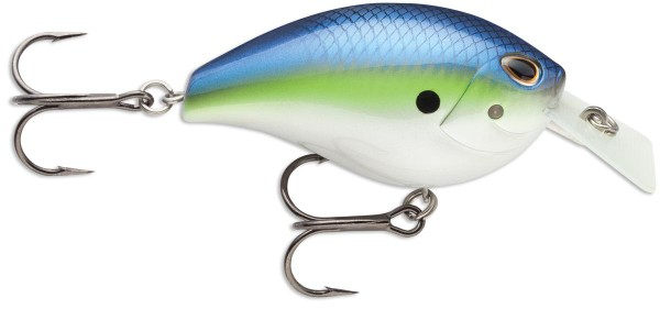 Hot Blue Shad