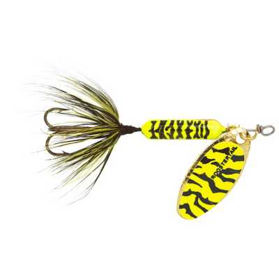 Chartreuse Black Tiger