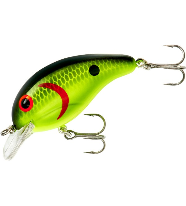Chartreuse Black Back Scales