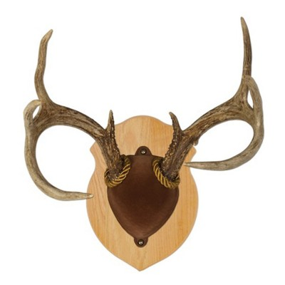 Walnut Hollow Country Solid Oak Antler Mount Kit
