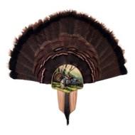 Walnut Hollow Country Spring Strut Turkey Mount Kit