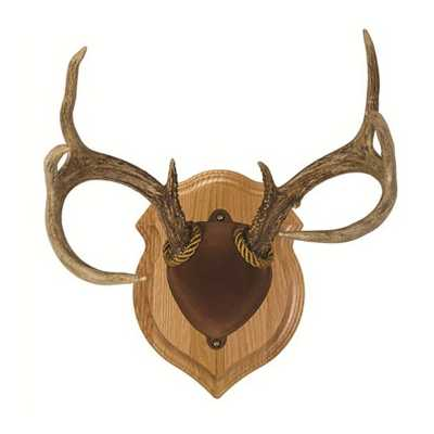 Walnut Hollow Country Deluxe Antler Mount Kit