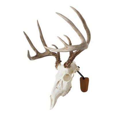 Walnut Hollow Country Euro Skull Mount Kit