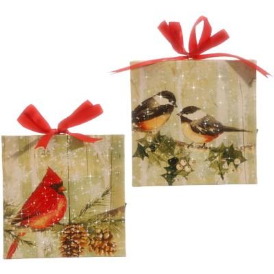 Raz Imports Bird Lighted Print Ornament