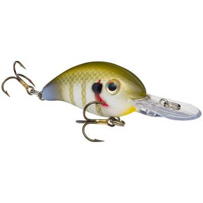 Sexy Sunfish