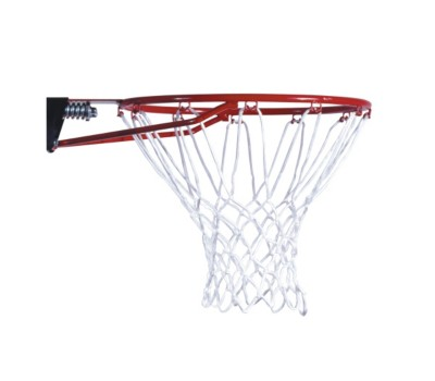 Lifetime Products Slam-It Basketball Rim with Red Net