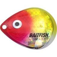 Northland Baitfish-Image Colorado Blades