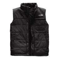 Men's The North Face Harway Vest