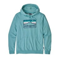 Men's Patagonia Line Logo Badge LW Hoody