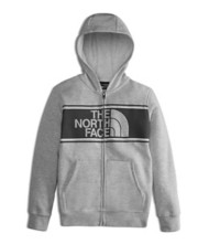 Youth Boys' The North Face Logowear Full Zip Hoodie