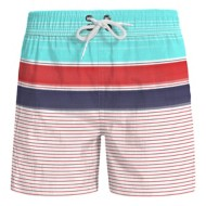 Men's Wes And Willy Bold Stripe Volley