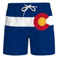 Youth Boys' Wes And Willy Colorado Stripe Logo Volley