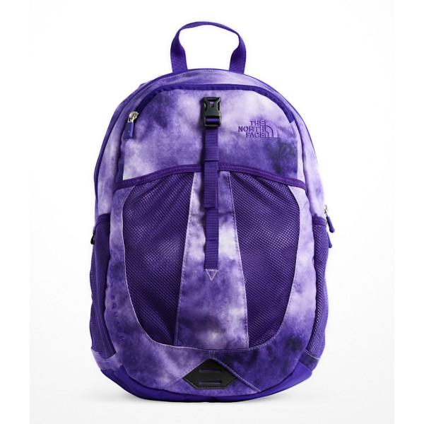 Dahlia Purple Cloud