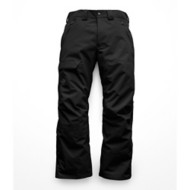 Men's The North Face Seymore Pant