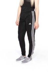 Women's adidas Tiro 19 Training Pant