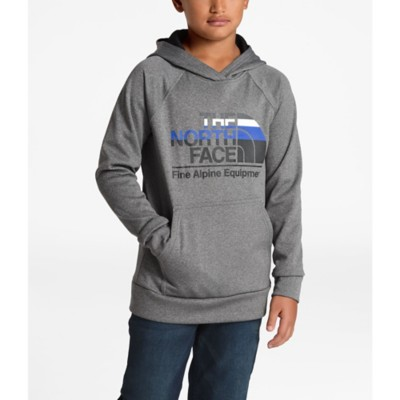 f638c86d015 Boys' The North Face Surgent 2.0 Pullover Hoodie
