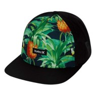 Mens' Hurley Mixtape Hat