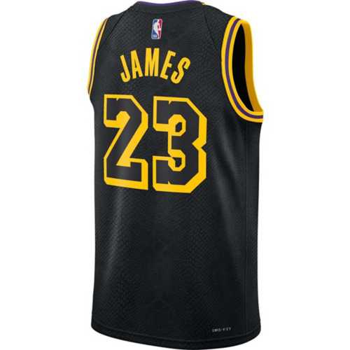 Nike Los Angeles Lakers LeBron James #23 Mamba City Edition Jersey