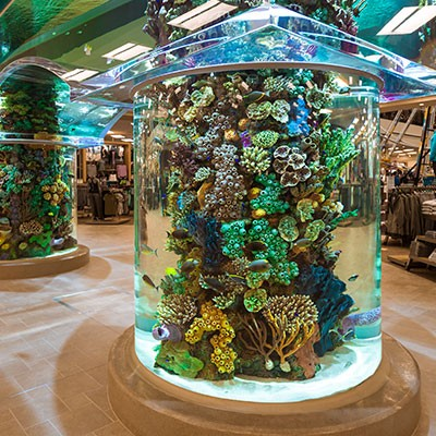 Aquarium at Johnstown SCHEELS