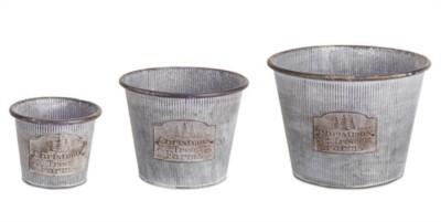 Melrose International Tree Farm Bucket
