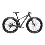 2019 Trek Farley 5 Fat Tire