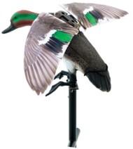 Lucky Duck Rapid Flyer Teal