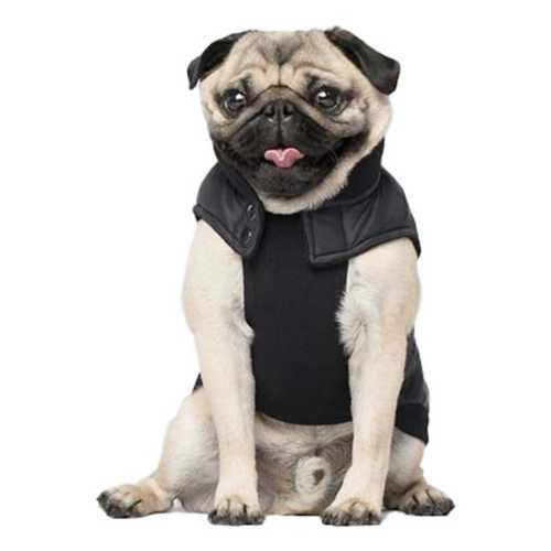 Canada Pooch Summit Stretch Camo Dog Vest