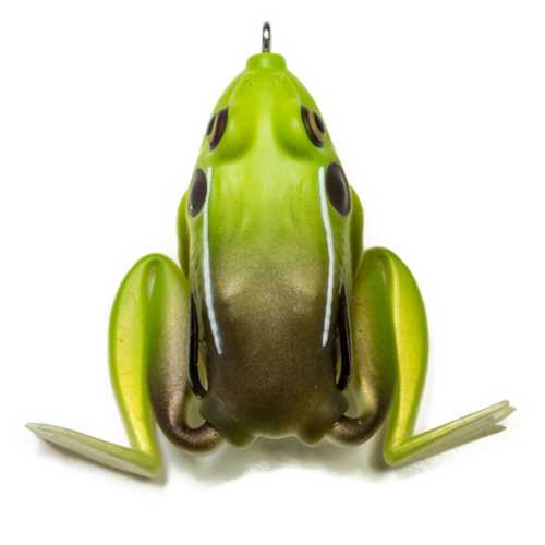 kingtoad
