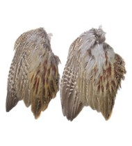 Classic T Designs Pheasant Wings