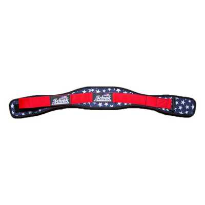 Schiek Lifting Belt