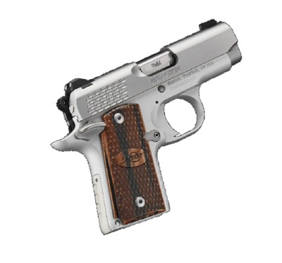 Kimber Micro 9mm Stainless Steel Raptor Handgun