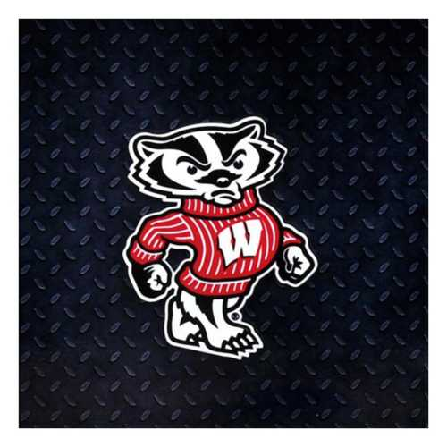 Authentic Street Signs Wisconsin Badgers Bucky Steel Magnet
