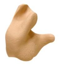 Radians Custom Molded Earplugs