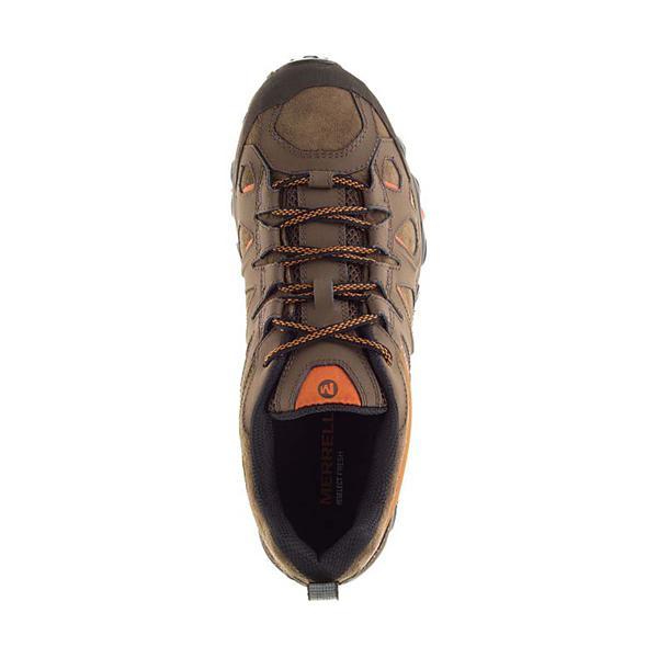 7a9d424b0da Men's Merrell Moab FST Leather Shoes