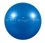 GoFit Pro Stability Ball