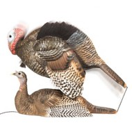 DSD Mating Motion Pair Turkey Decoys