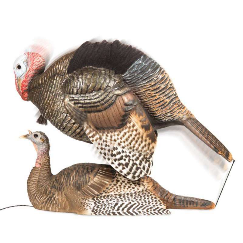 DSD Mating Motion Pair Turkey Decoys